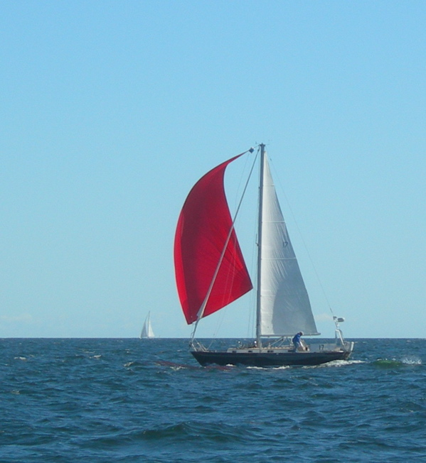 Maine rocks race, Cluster cup, Sailboat racing